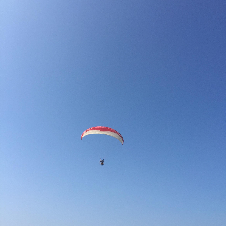 こういう感じで飛んでて、遠くからだとなんだかわからない。